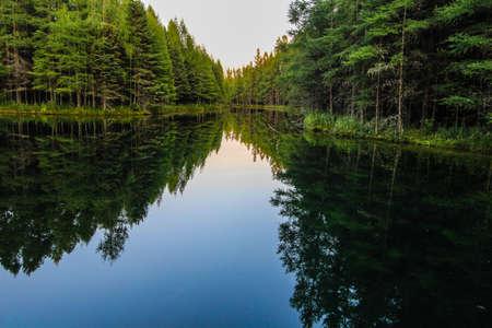 Wilderness Forest River Reflections. Rivier stroomt door de wildernis van Upper Peninsula bos van Michigan. De rivier stroomt van Kitch iti kipi veer in Indian Lake. Palms Book State Park, Manistique, Michigan.