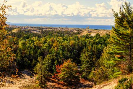 desert ecosystem: Lake Michigan Coastal Dune Panorama. Forested freshwater coastal dune ecosystem on the shore of Lake Michigan. The Great Lakes have the largest freshwater dune ecosystem in the world along their coast