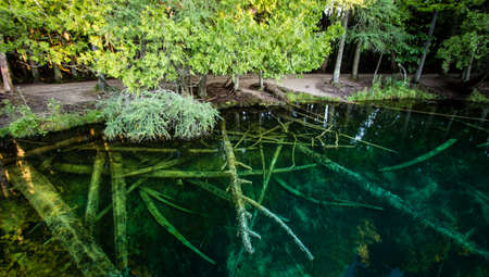 Michigan Largest Natural Springs Panorama. Michigans largest spring is Kitch I ti ki pi in Palms Book State Park. The natural springs are located in the Upper Peninsula on the outskirts of Manistique
