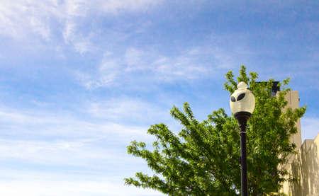 Buitenaardse Straatlantaarn In Het Centrum Van Roswell, New Mexico. Lantaarnpaal met buitenaardse ogen sieren de straten van Roswell in het centrum. Het stadje werd wereldberoemd nadat een buitenaards UFO-ruimtevaartuig daar in de jaren veertig zou zijn neergestort