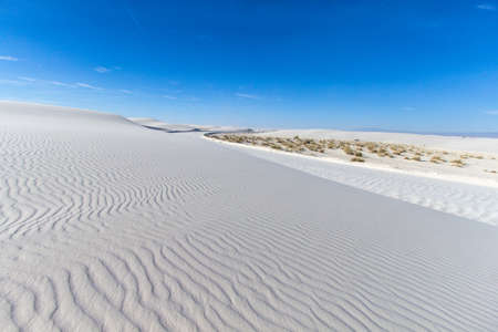 American Southwest Desert Landscape. Desert landscape with copy space at the White Sands National Monument in New Mexico