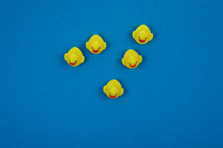 Yellow ducklings with isolated blue background.