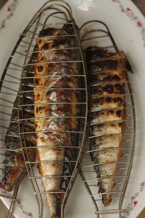barbecuing: Barbecuing fish (mackerel) on charcoal fire closeup image.