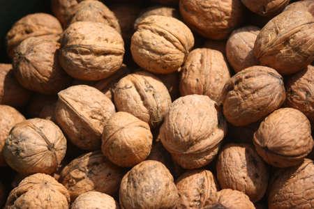 l nutrient: Nuts, fruits of Juglans regia L.