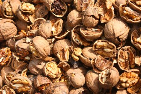l nutrient: Cracked nuts, fruits of wallnut, Juglans regia L.