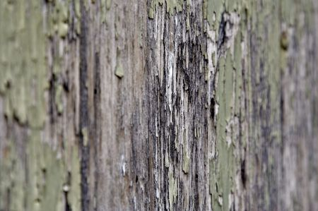 Angled Aged Wooden Texture photo