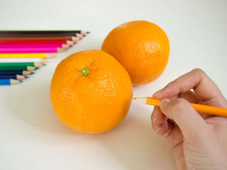 colored pencil: looks like drawing oranges with the colored pencil Stock Photo