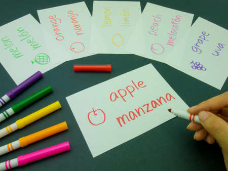 Making language flash cards for fundamental words; apple, lemon, peach, melon, grape and orange. Stock Photo