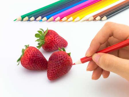 Parece grawing frutas y verduras en el fondo blanco. Foto de archivo - 43204657