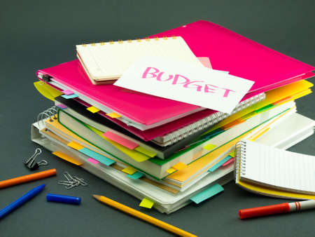 pile of documents: The Pile of Business Documents; Budget