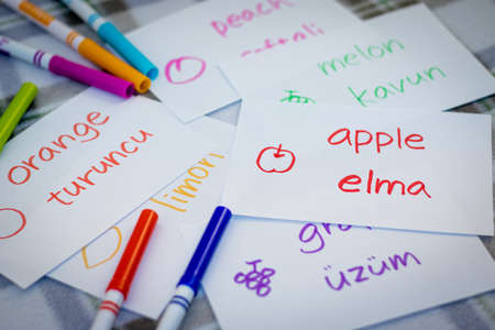 bilingual: Turkish; Learning New Language with Fruits Name Flash Cards