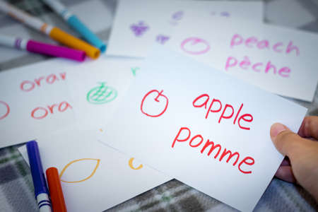 French; Learning New Language with Fruits Name Flash Cards Stock Photo