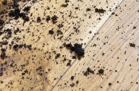 Mud on the floor, background