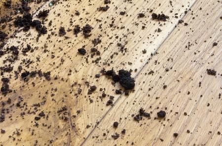 mud house: Mud on the floor, background