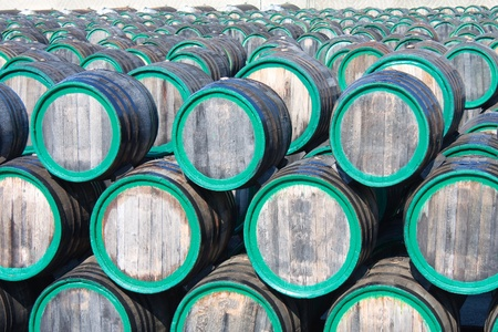 Top view of wine barrels on madeira wine-yard photo
