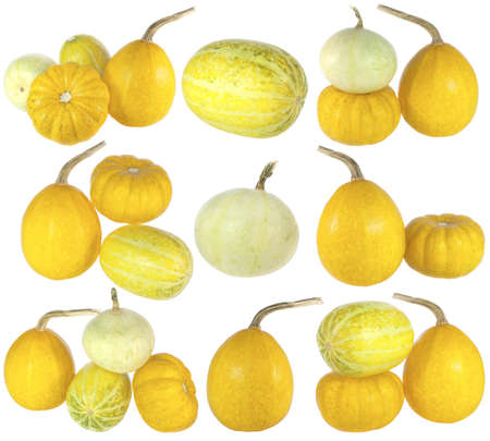 High resolution set of diverse colorful pumpkins isolated on white background photo
