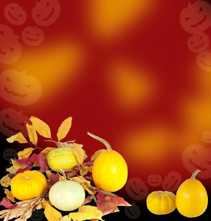 Halloween pumpkins and autumn leaves arranged on abstract background photo