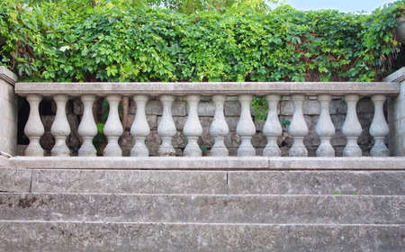 historically: Ancient stairs and columns covered with ivy leaves
