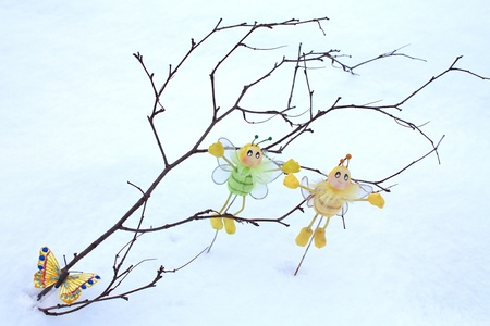 Butterfly and bees on branch in the snow photo