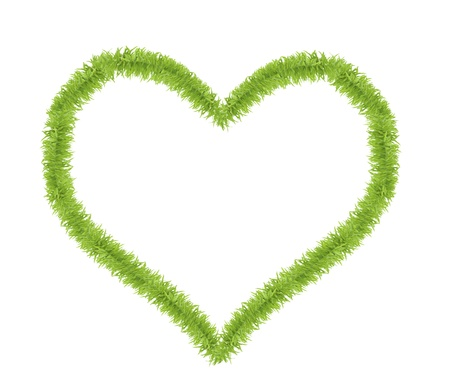 heart shaped from small green grass isolated on white background photo
