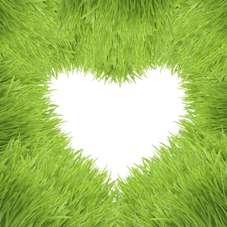 love image: green heart isolated on white background, grass photo frame Stock Photo