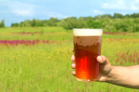 Glass of lager beer in the hand against spring field background photo