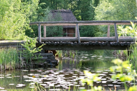 Small wooden bridge over the lake