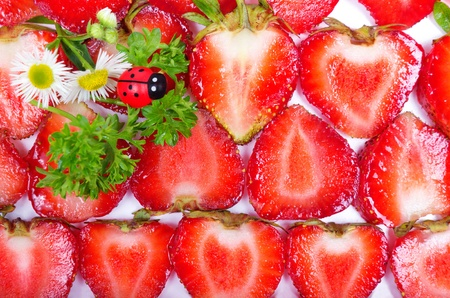 Background texture of sliced strawberries and ladybugs photo