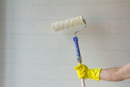 Close up of hand of house painter worker with painting roller photo