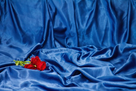 Red roses on a bed with blue sheets photo