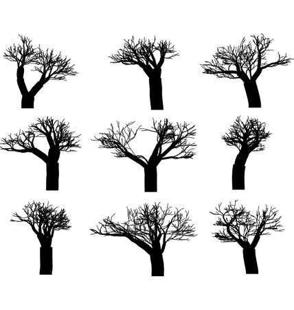 bareness: set of winter trees without leaves silhouettes
