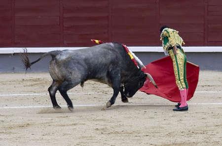 matador: Een torero (of matador) in de arena.