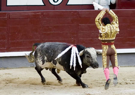 torero: A banderillero in the bullring in Spain.  The banderillero is a torero who sets the banderillas, which are colorful sticks with a barbed point which are placed in the top of the bulls shoulder.