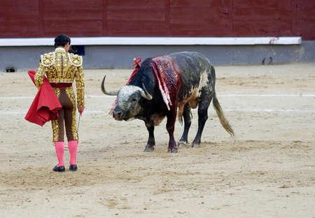 torero: A torero (or matador) in the bullring