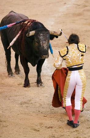 matador: Stier met een torero (of matador) in de arena. Stockfoto
