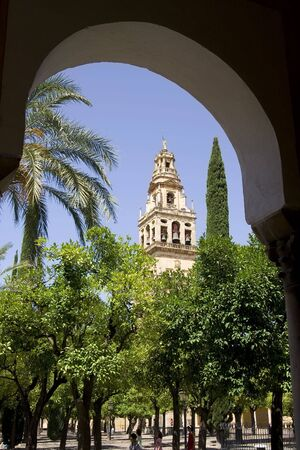 converted: View of the Patio de los Naranjos at the Mezquita of Cordoba. The mezquita, or now Cordoba Cathedral, was once the second largest mosque in the world.  It was later converted to a catholic cathedral but remains an important muslim site. Stock Photo