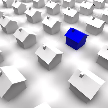 3d rendered illustration of a blue house standing out from the rest.