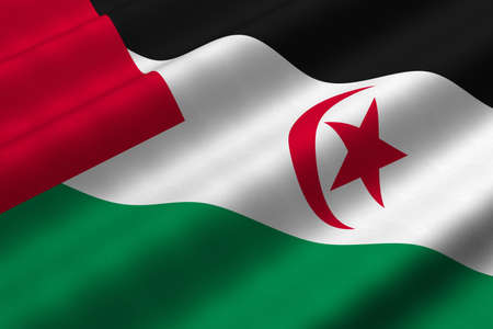 Detailed 3d rendering closeup of the flag of Western Sahara.  Flag has a detailed realistic fabric texture. Stok Fotoğraf