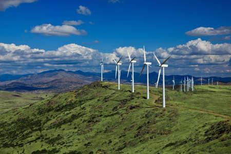 wind farm: Vista de un parque e�lico con un cielo azul y las nubes.