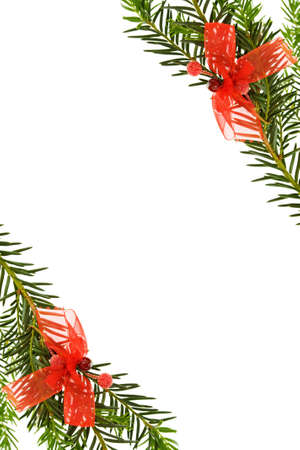 Christmas border with pine tree and ribbons photo