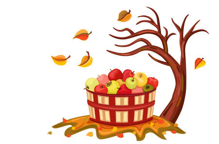 wicker: Beauty of autumn with apple harvest in a wicker basket. Isolated over white background. Vector illustration saved as EPS AI8, all elements layered and grouped.  Illustration