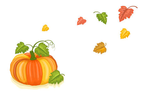 Autumn harvest with tasty pumpkin and falling leaves. Isolated over white background.  Illustration