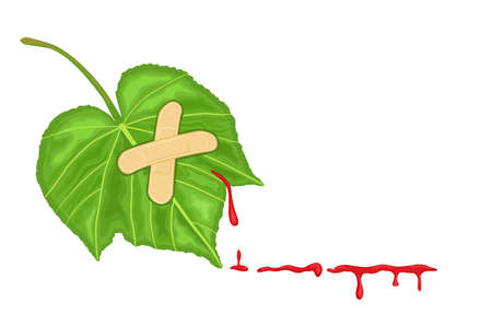 Wounded nature - green ecology to protect the environment of our planet. With bleeding leaf, isolated over white background. Room for your text. Vector illustration saved as EPS A8, all elements layered and grouped.  Vector