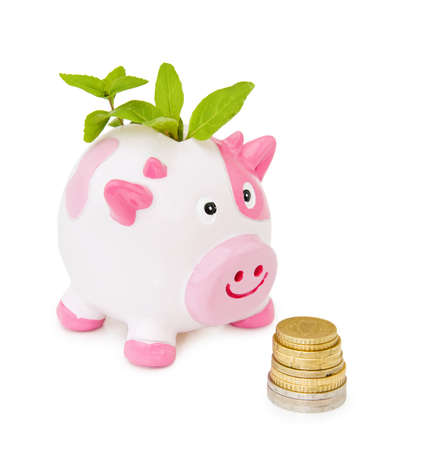 stash: Growing your savings - piggy bank with stash of coins. Over white background.