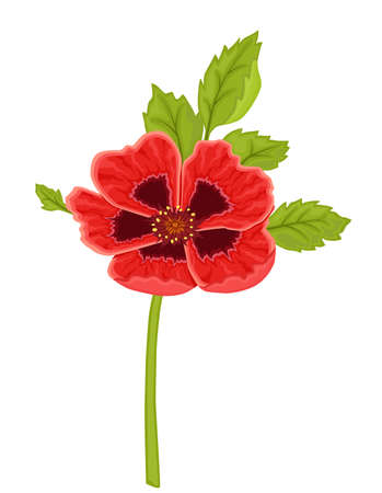 Red poppy flower. Isolated over white background. Vector file saved as EPS 8, all elements layered, grouped, no gradients, no effects, easy print.  Vector