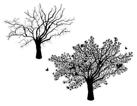 arboles secos: Los árboles solitarios