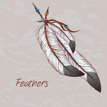 깃털의 벡터 다채로운 그림