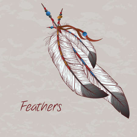 indian ink: Vector colorful illustration of feathers