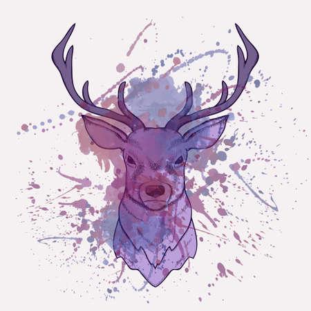 Vector grunge illustration of deer with watercolor splash Vector