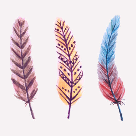 Vector set of watercolor feathers Vector
